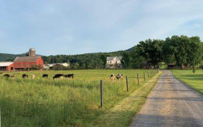 Wadel's Farm Wagon